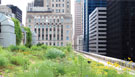 From City Beautiful to Green Metropolis